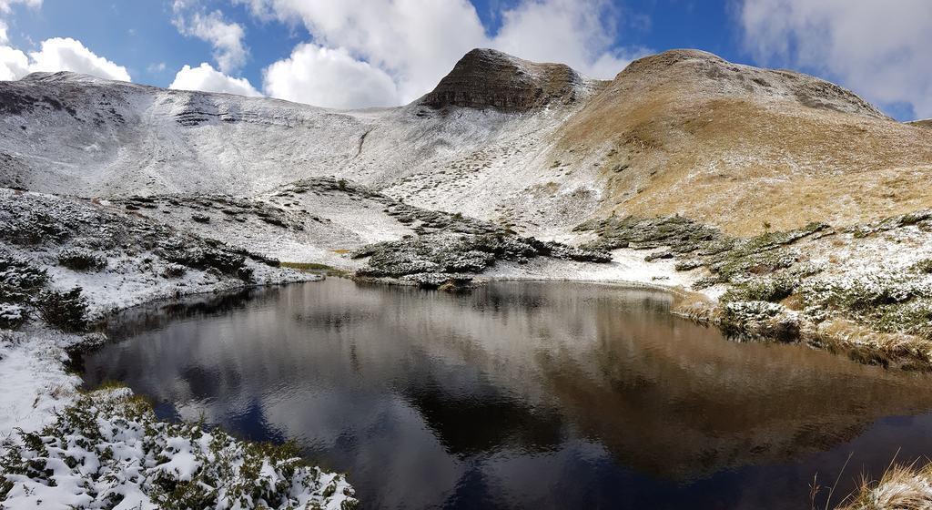 В Карпаты пришла зима: яркие фото