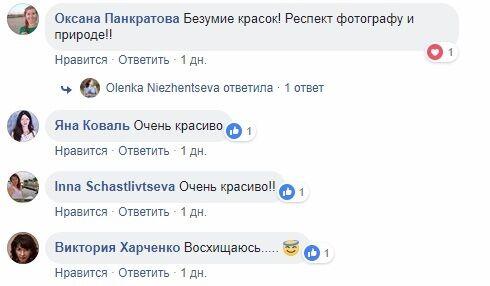 ''Божевілля барв'': у мережі з'явилися яскраві фото українського курортного міста