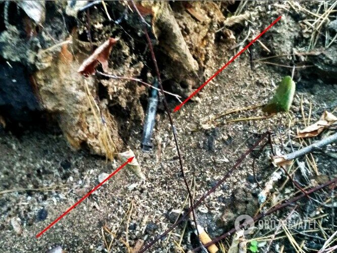 В лесополосе, которую облюбовали наркоманы, валяется много шприцев