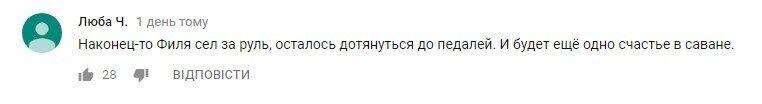 """""""Який красень"""": в Криму лев заліз в машину до туристів"""
