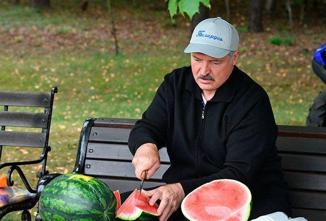 """Лукашенко похвастался """"нетипичными"""" арбузами"""