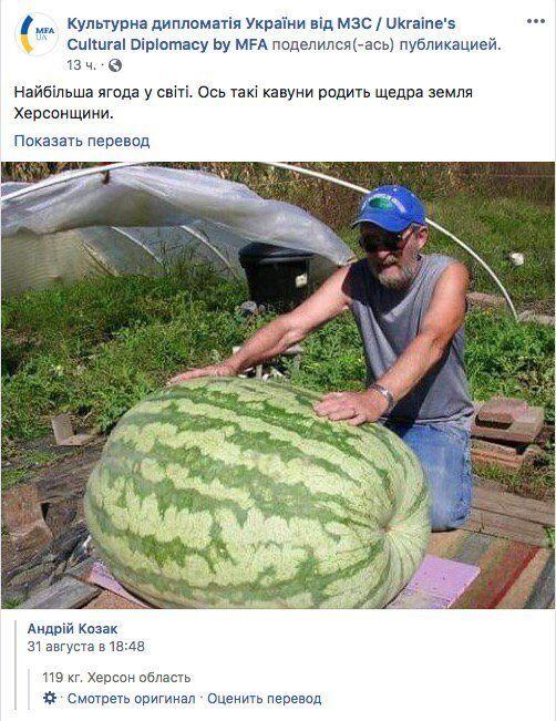 Найбільша ягода в світі? МЗС України похвалилось фейковим рекордом