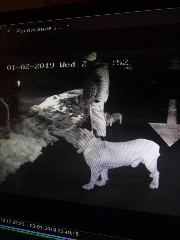 Подозреваемый, зафиксированный камерой видеонаблюдения