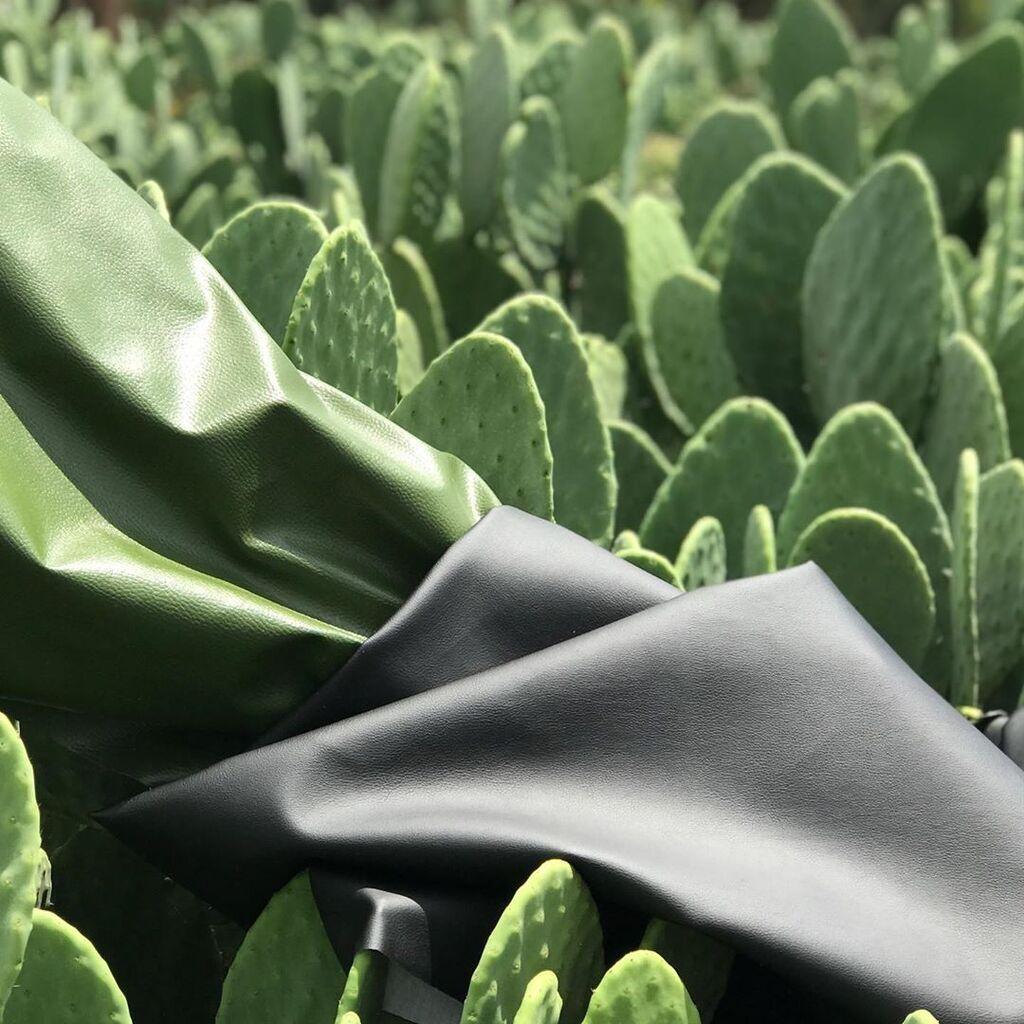 Тканина з кактусів на фоні опунції