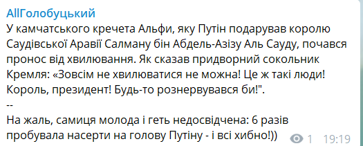 Загадил весь дворец: Путина подняли на смех из-за конфуза