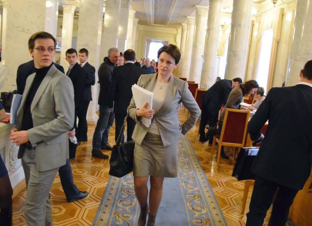 """Южанина назвала законопроект №1210 слишком """"сырым"""""""