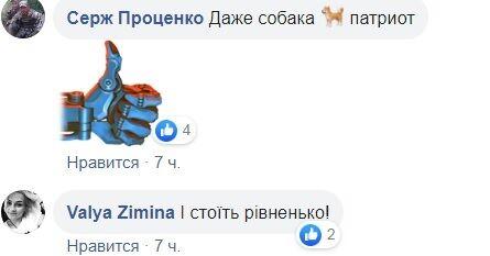 Співав гімн: українців підкорило відео ЗСУ з псом-патріотом