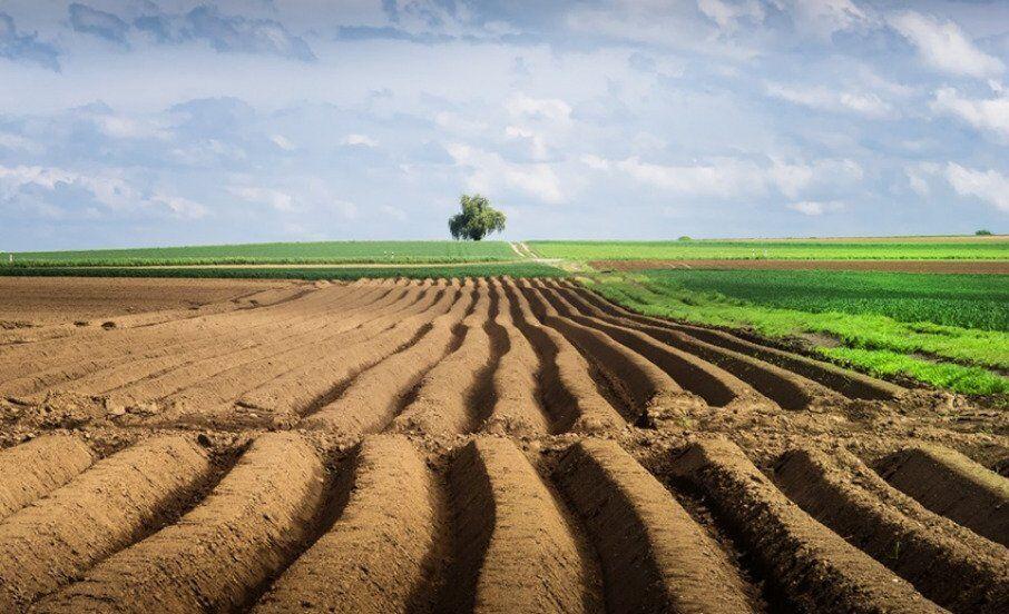 Реформа ринку землі
