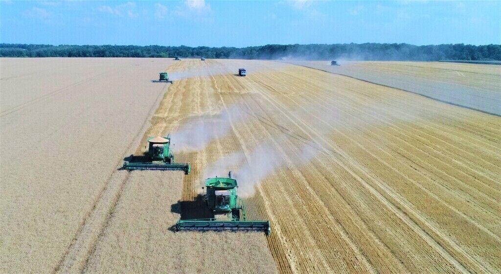 Сбор урожая-2019