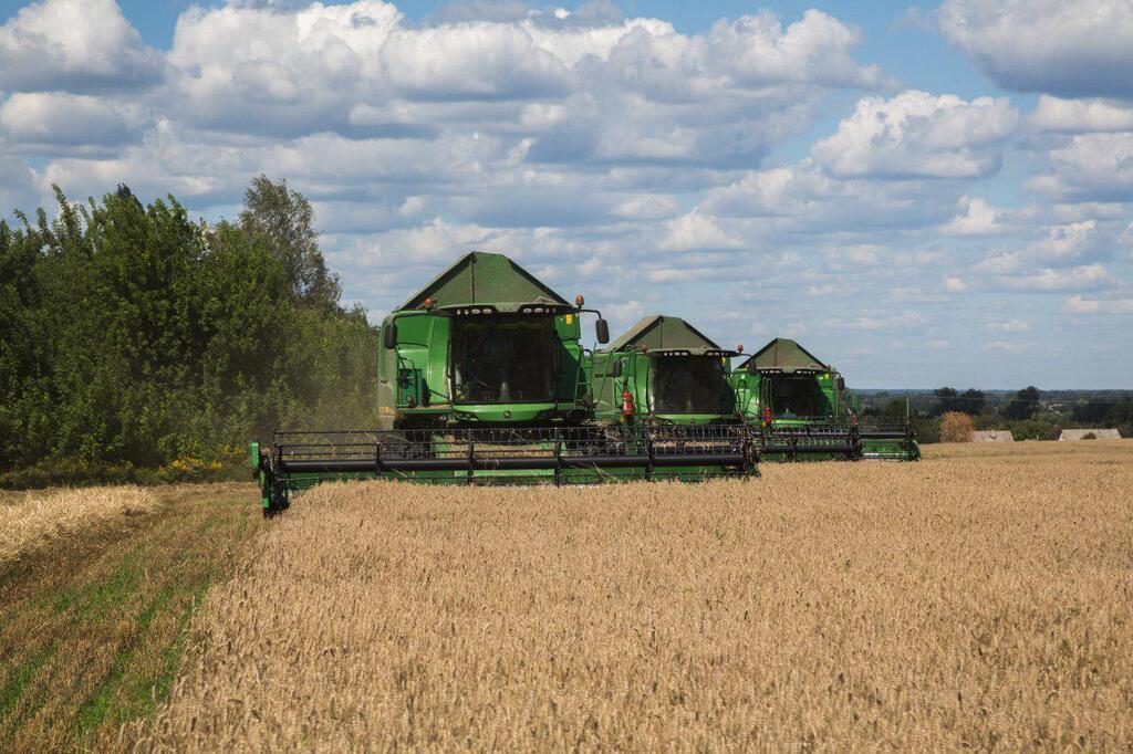 Побеждали засуху и боролись за работников: итоги-2019 украинских аграриев