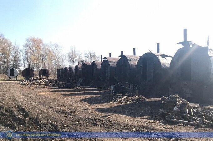 СБУ заблокировала вырубку леса в огромных масштабах под Харьковом
