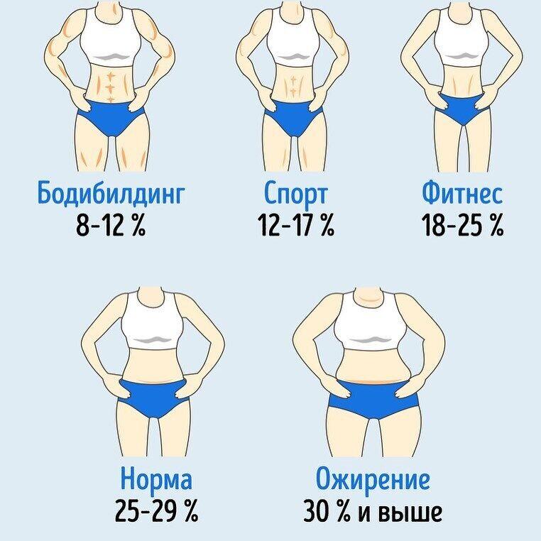 Сколько должно быть жира в теле: названа норма