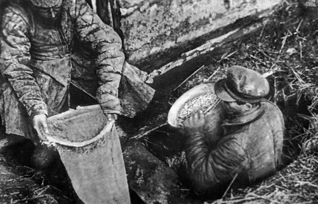 Как большевики организовали Голодомор