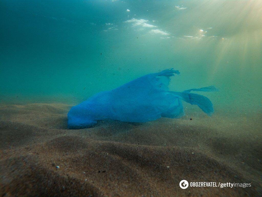 Пластикові пакети завдають величезної шкоди екології