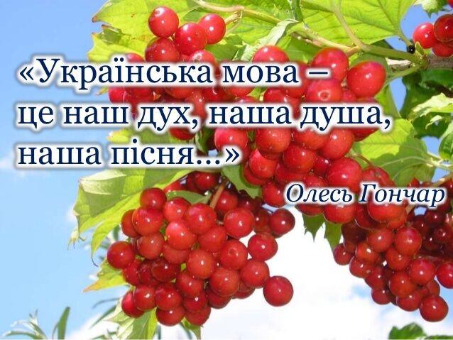 """С 2000 года в День украинской письменности и языка в прямом эфире """"Украинского радио"""" транслируют """"Диктант национального единства"""""""