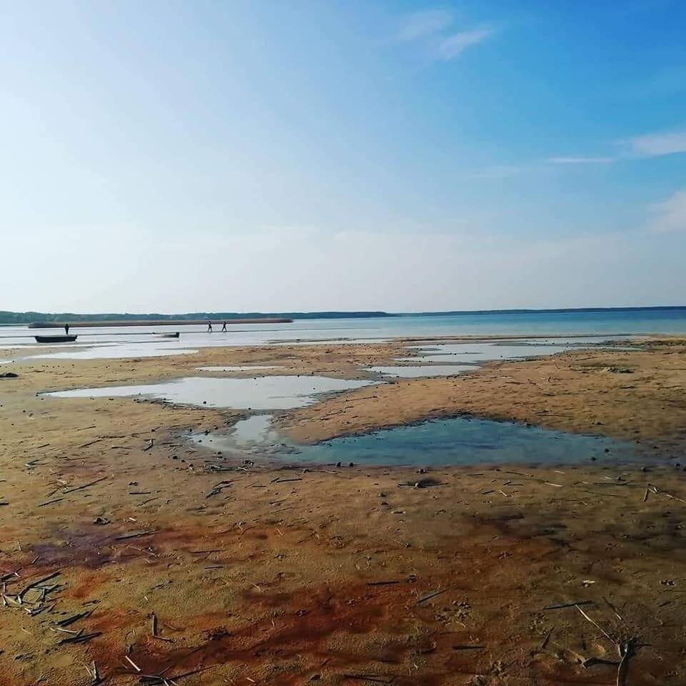 Стан Шацьких озер погіршується