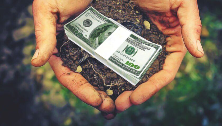 Запуск рынка земли: украинцам дали совет, как заработать