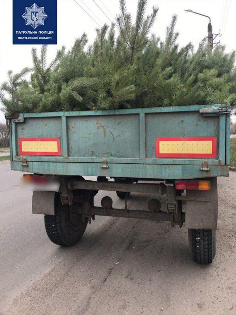 Спіймали вантажівку з нелегальними деревами