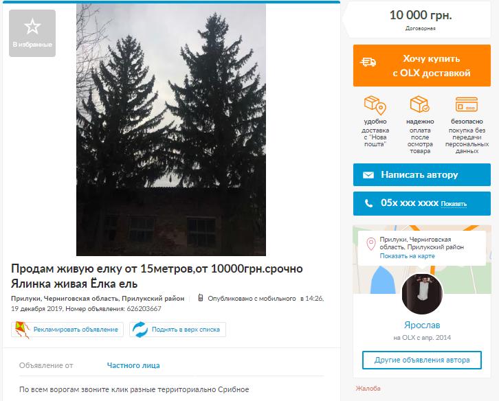Продають і такі екземпляри дерев