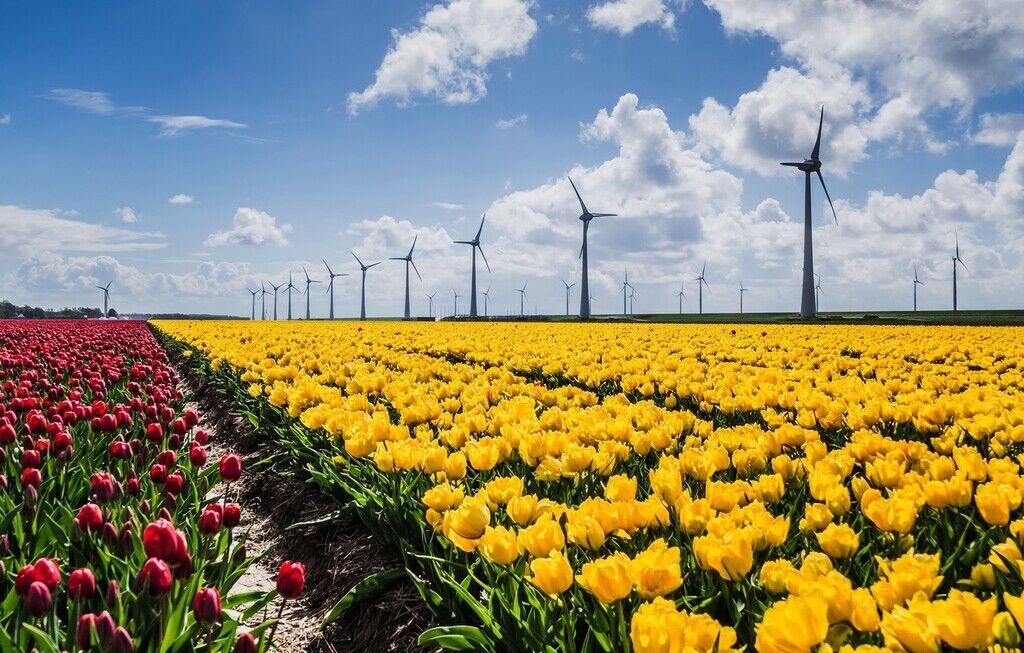 Энергия из солнца и ветра в Украине