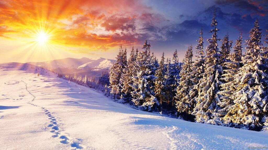Гороскоп на 3 декабря: что ждёт Львов, Раков, Дев и другие знаки зодиака