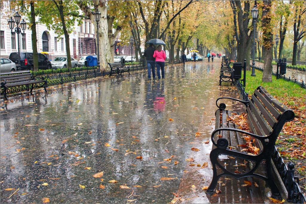 Сніг з дощем і не тільки: прогноз погоди на 3 грудня в Одесі