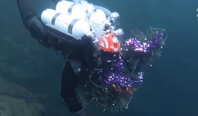 У Дніпрі встановили підводну ялинку