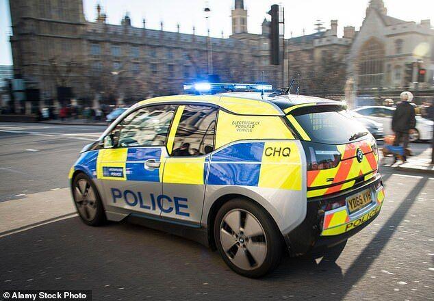 Електрокар поліції
