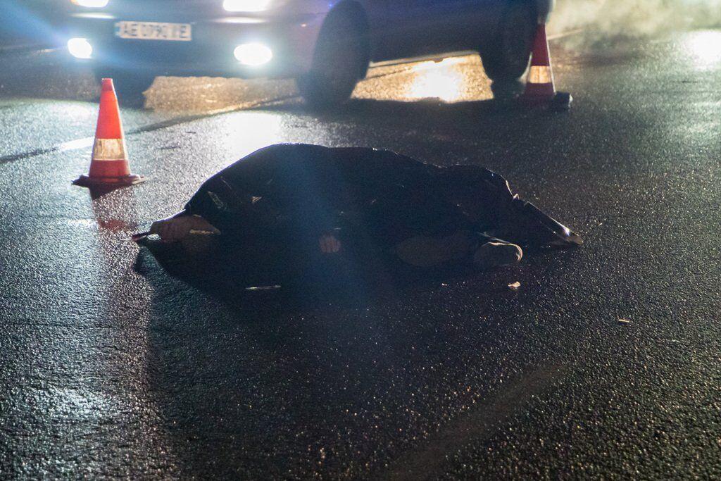 Перебігав дорогу: на Донецькому шосе на смерть збили пішохода