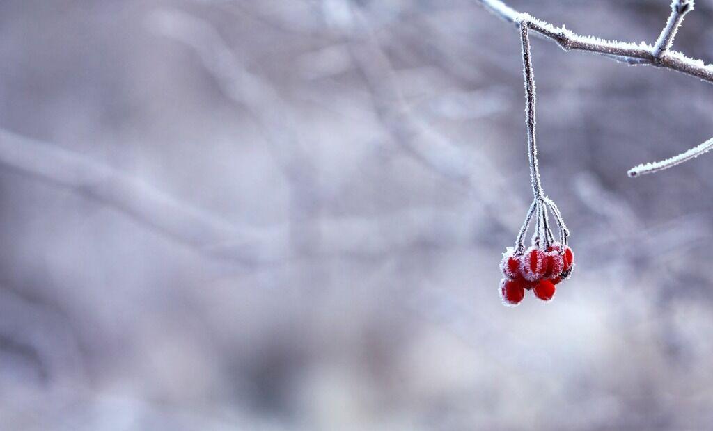 Прикмети і свята 4 грудня 2019: що не можна робити