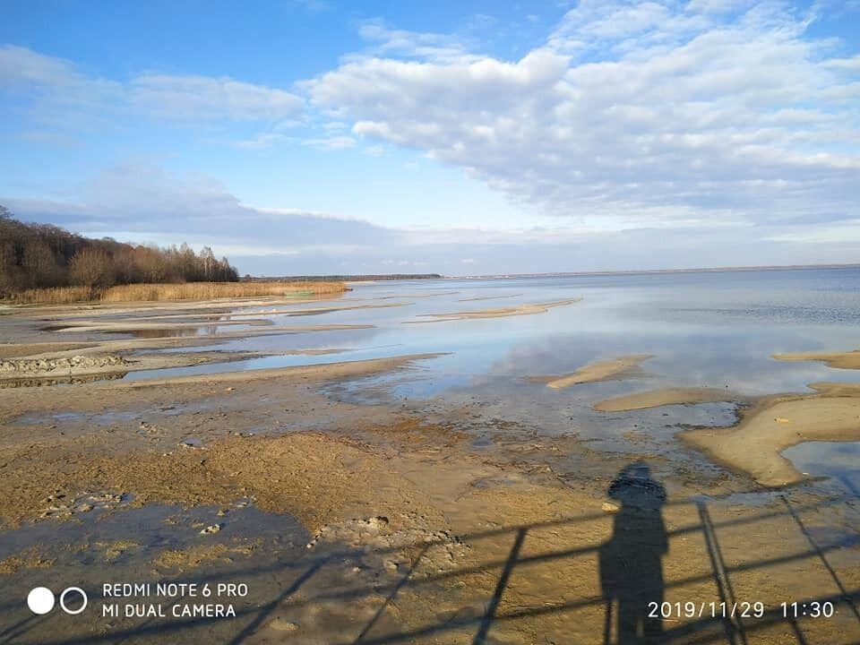 Озеро Світязь катастрофічно обміліло