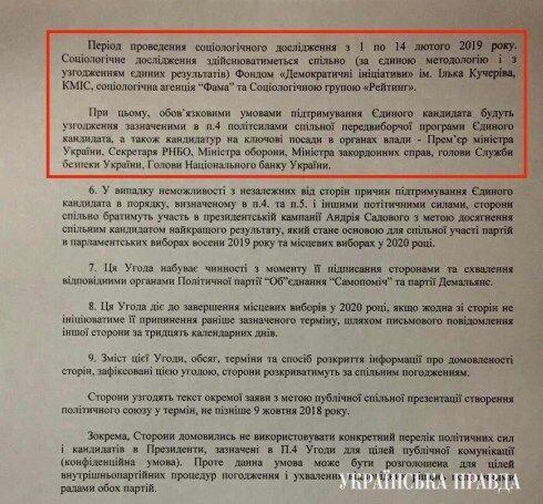 Обговорення союзу Гриценка і Садового: в ЗМІ потрапив таємний документ