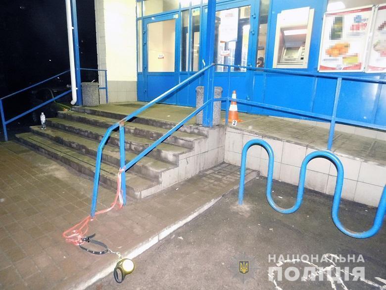 Натравил пьяный хозяин: в Киеве разгорелся спор вокруг застреленной полицейскими бойцовской собаки