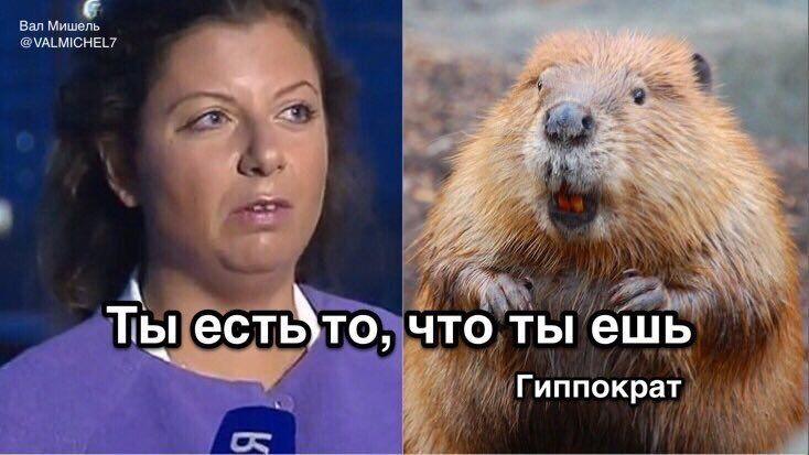 """''Марго, твое – это подлизывание'': пропагандистку Путина размазали в сети за ''подхрюкивание-челлендж"""""""