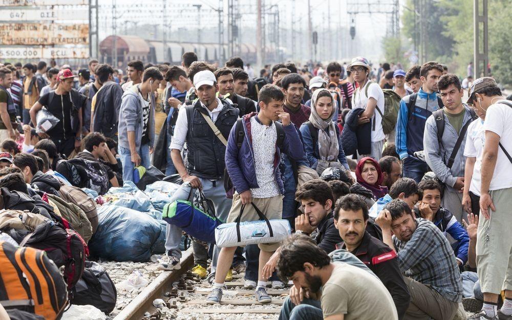 Арабські емігранти в Німеччині