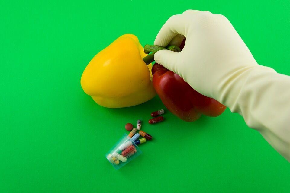 Чи шкідливі продукти з ГМО: вся правда
