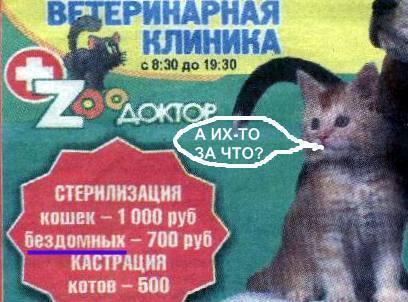 У Криму оголосили про кастрацію безпритульних