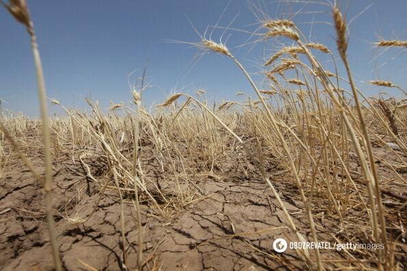 Засуха в Крыму обострилась: россияне положили глаз на реки
