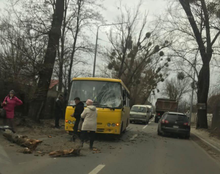 У Києві ураган зламав дерева і зніс дахи: є постраждалі