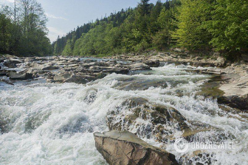 Найчистіші річки України: де вони протікають