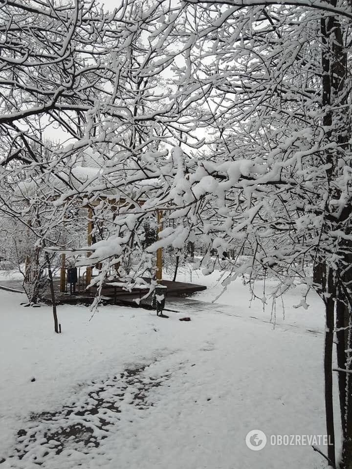Снег в Киеве