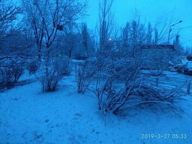 Україну засипало снігом: яскраві фото