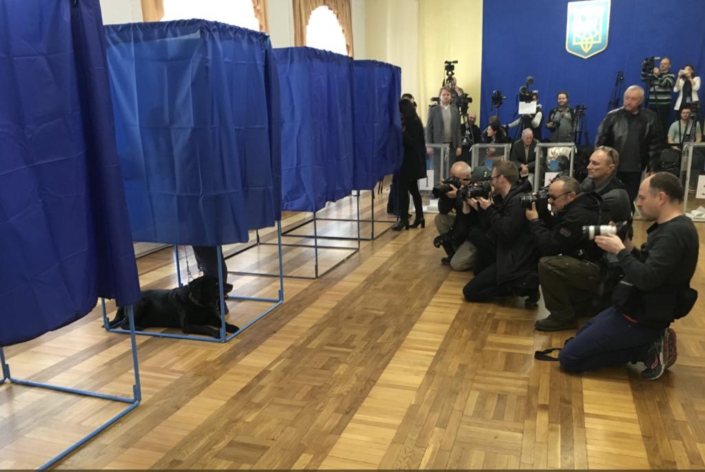 Голосують навіть собаки: на виборах стався курйоз