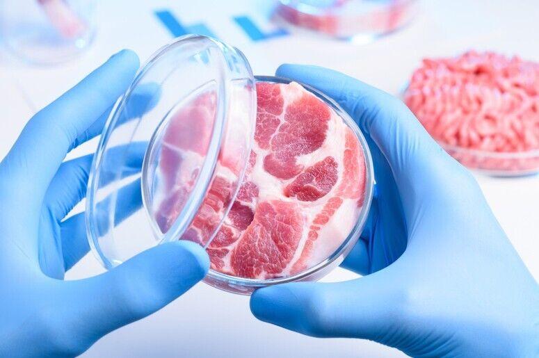 Синтетическое мясо: что это такое и где из него уже готовят бургеры