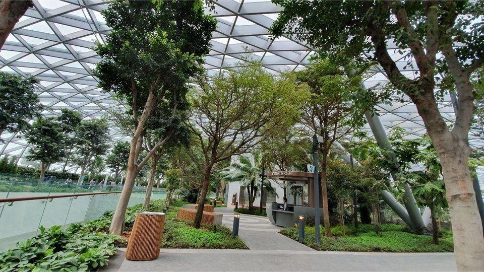 Аеропорт в Сінгапурі вразив мережу: що в ньому незвичайного