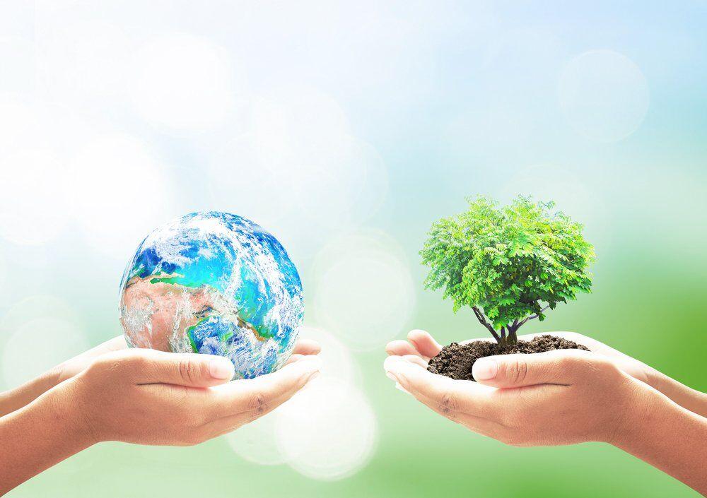 Google присвятив новий дудл Дню Землі
