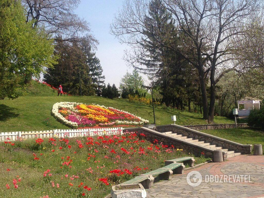 В Киеве открылась ежегодная выставка тюльпанов: яркие фото