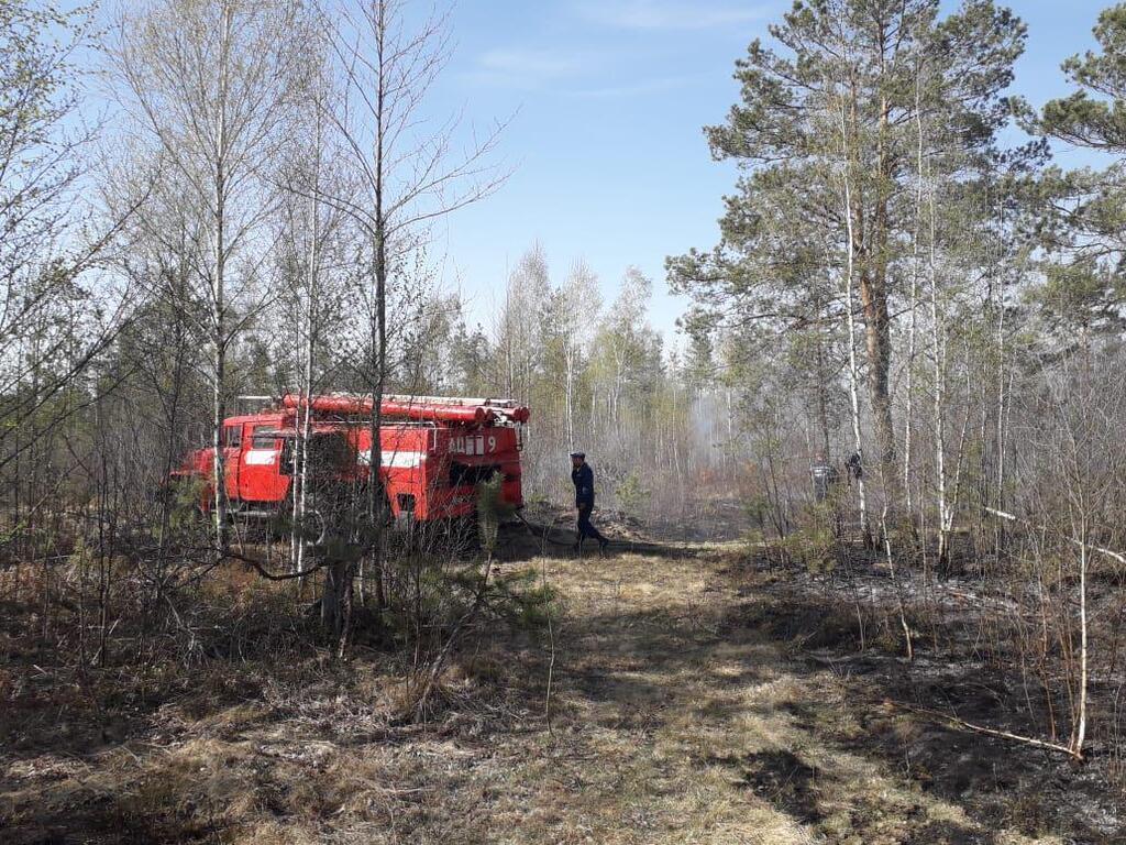Пожежа з Білорусі підібралася до України