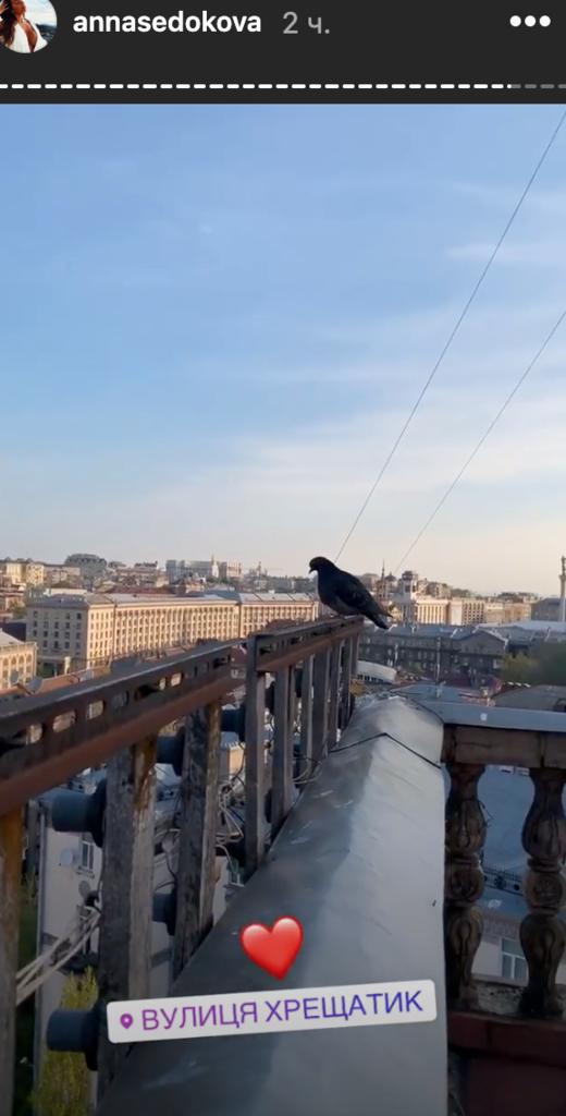 Сєдокова втекла з Росії: що трапилося