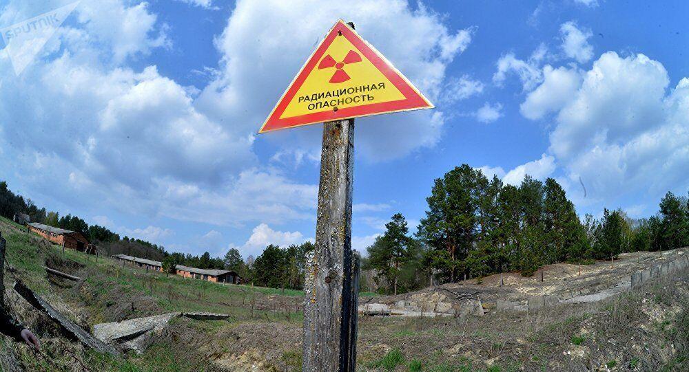 В Беларуси решили проводить экскурсии в зоне отчуждения